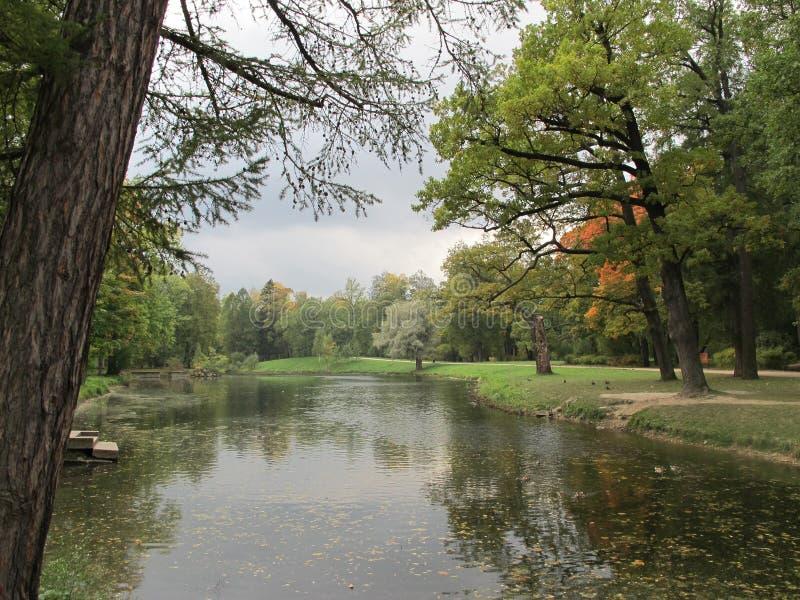 Jesieni jezioro w parku i drzewo zdjęcie stock