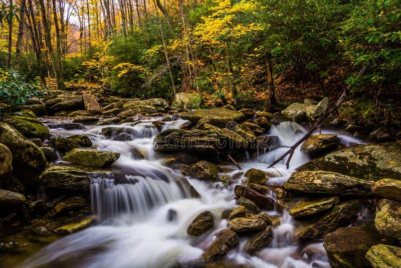 Jesieni kaskady na Boone i kolor Rozwidlamy wzdłuż Błękitnej grani normy obraz stock