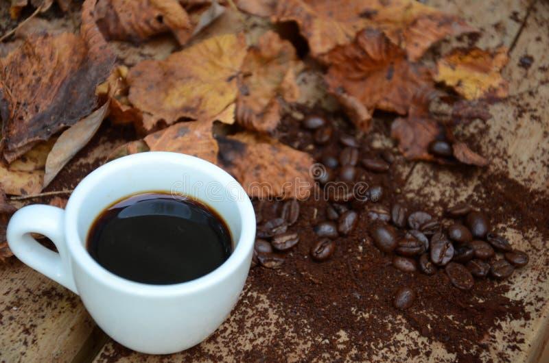Jesieni kawa zdjęcia royalty free