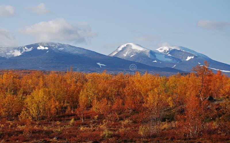 jesieni krajobrazowa góra zdjęcie royalty free