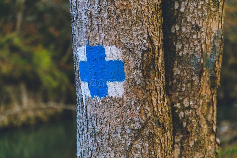 Jesieni lasowych drzew błękita znaka podróż zdjęcia stock