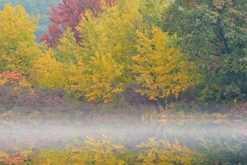 Jesieni linii brzegowej Hall jezioro w mgle obraz royalty free