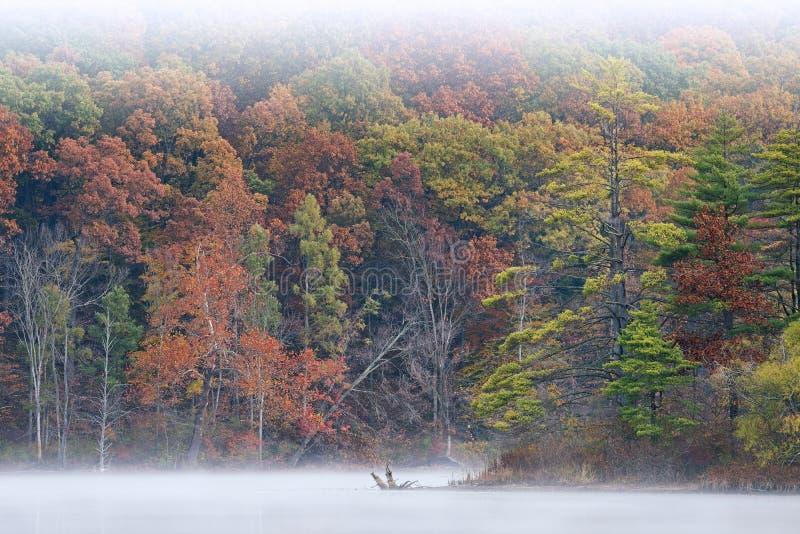 Jesieni linii brzegowej Hall jezioro w mgle fotografia stock