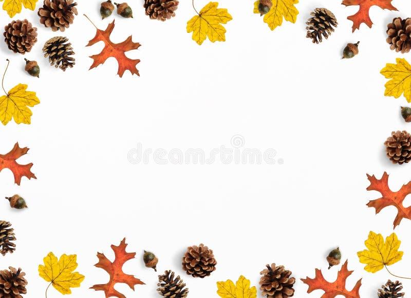 Jesieni mockup scena Kreatywnie spadku skład robić kolorowy klon, dębów liście, sosna rożki i acorns, mieszkanie nieatutowy obrazy royalty free