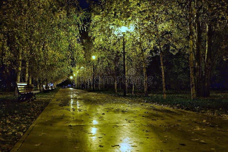 Jesieni noc w miasto parku zdjęcia royalty free