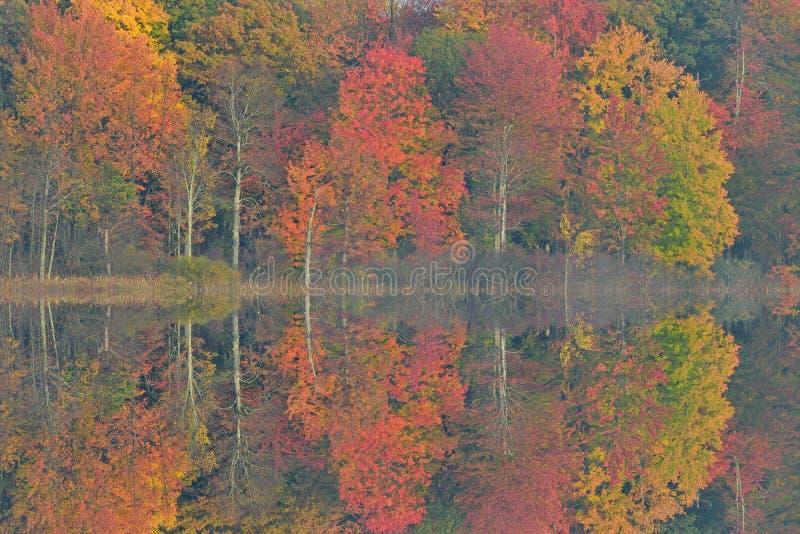 Jesieni odbicia Zgłębiają jezioro obraz stock