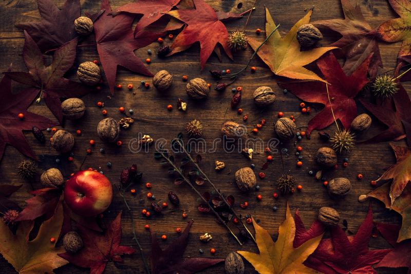 Jesieni owoc i liście obrazy royalty free