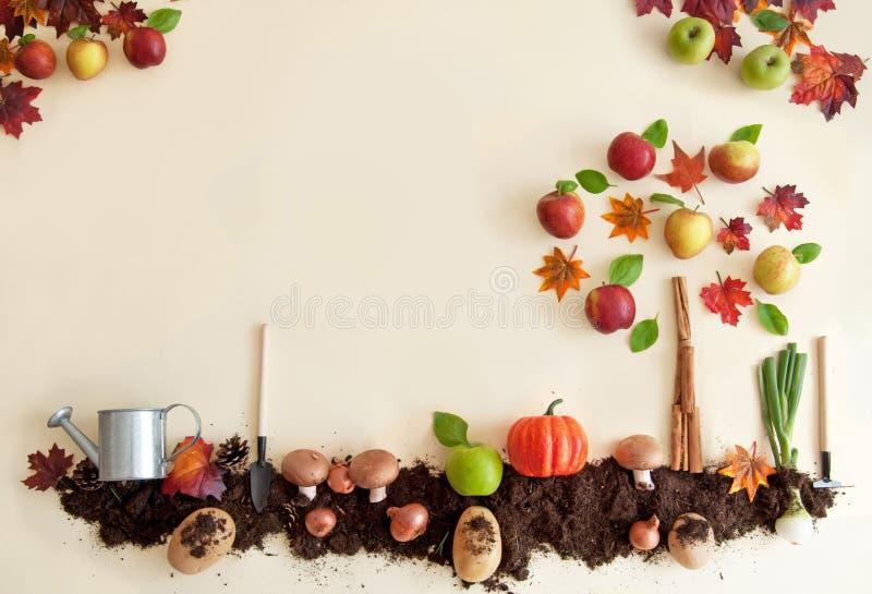 Jesieni owoc i warzywo ogród zdjęcia stock