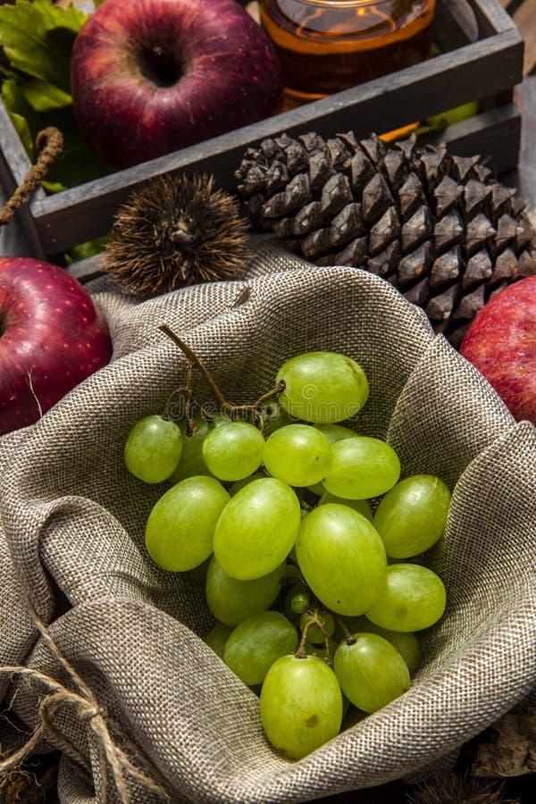 jesieni owoc skład obrazy royalty free
