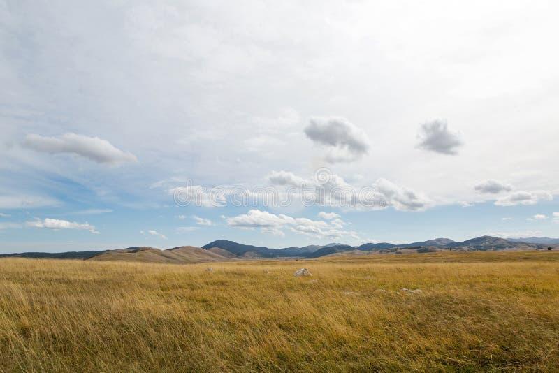 Jesieni pole z żółtą trawą i górami obrazy stock