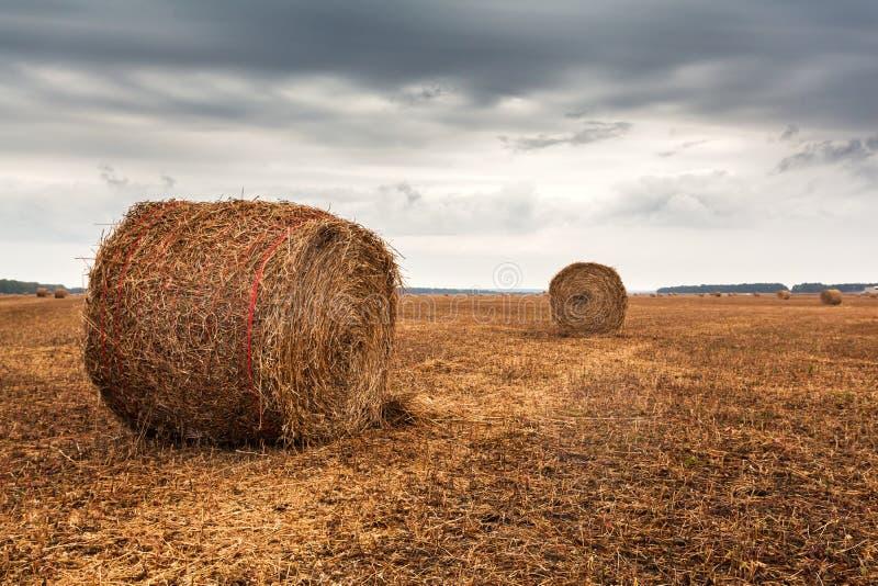 Jesieni pole z snopami siano i dramatyczny niebo obrazy stock