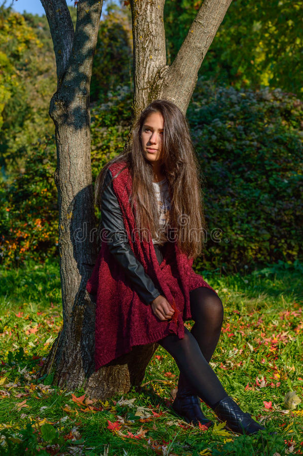 Jesieni portait, urocza dziewczyna obraz stock