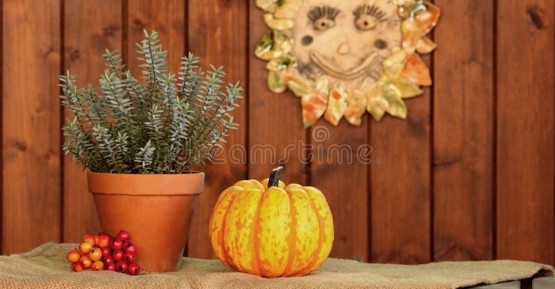 Jesieni przygotowania obraz royalty free