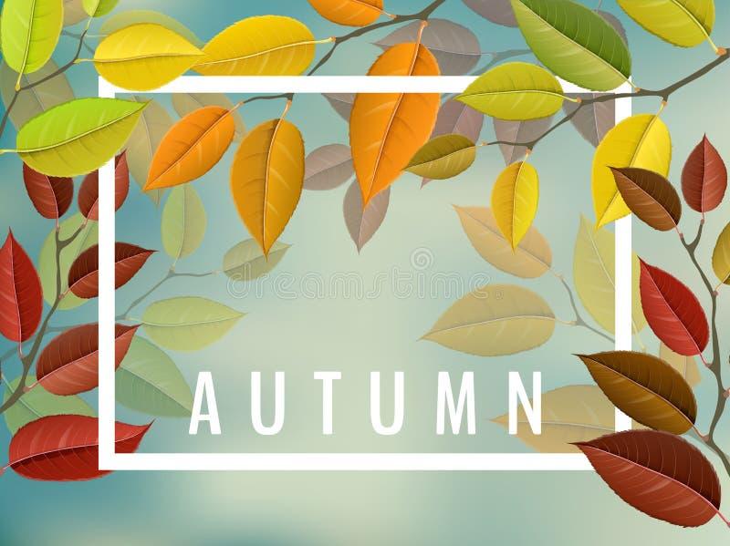 Jesieni rama z kolorowymi gałąź ilustracja wektor