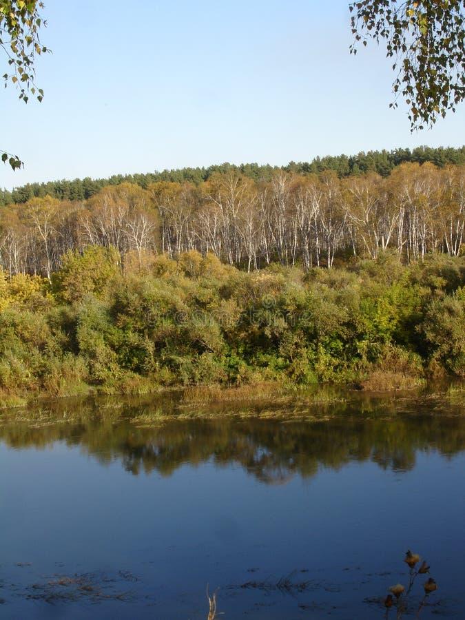 Jesieni rzeka zdjęcia stock