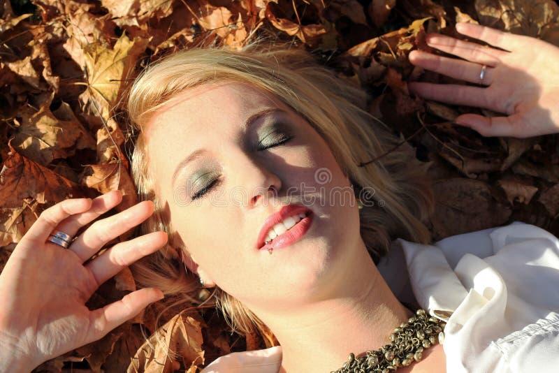 Jesieni słońce zdjęcie royalty free
