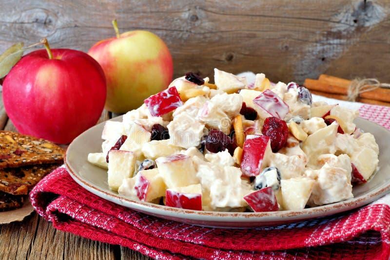 Jesieni sałatka z kurczakiem, jabłka, dokrętki, cranberries w jogurtu opatrunku obraz royalty free