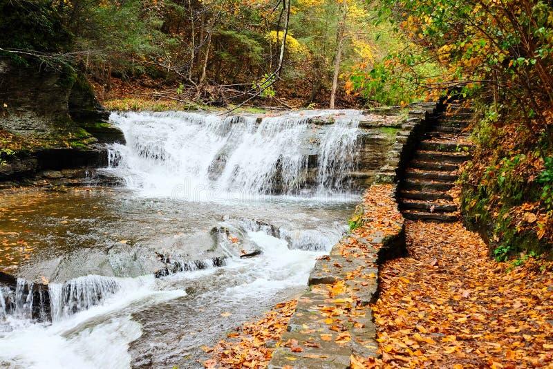 Jesieni scena siklawy zdjęcia stock