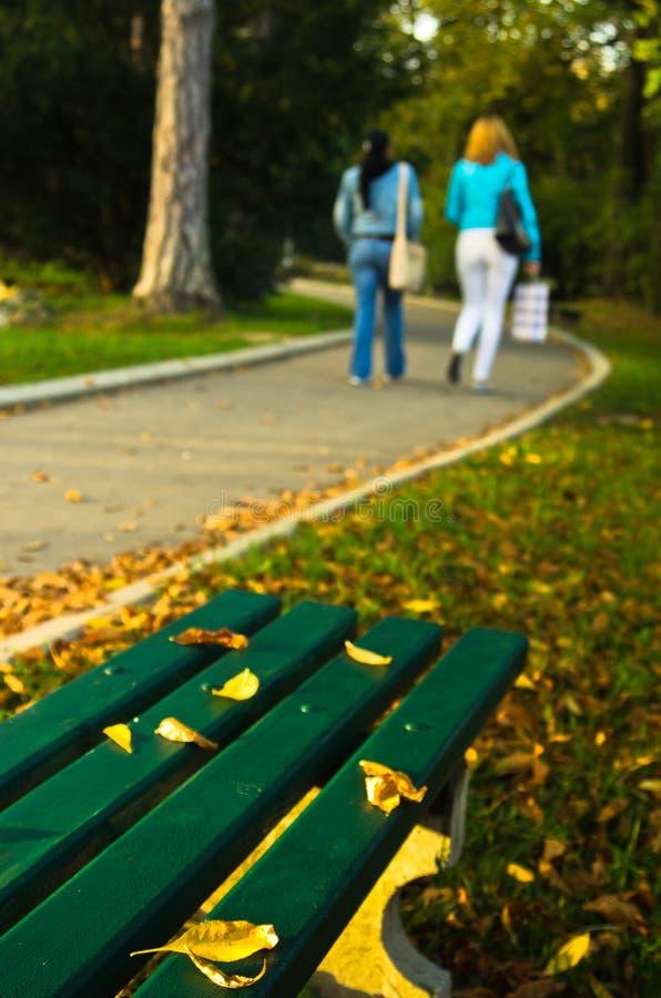 Jesieni sceneria, kolor żółty opuszcza na zielonej ławce w parku obrazy stock