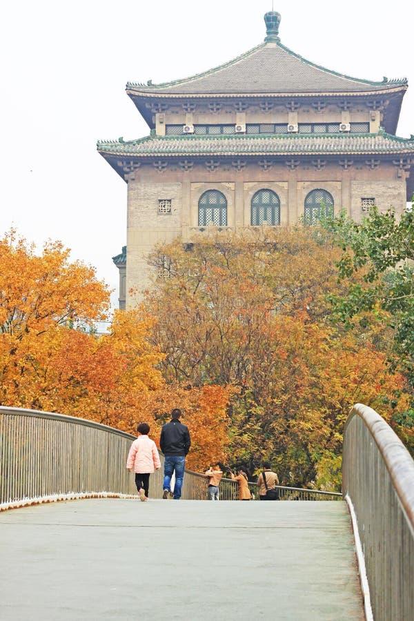 Jesieni sceneria w Pekin obraz royalty free