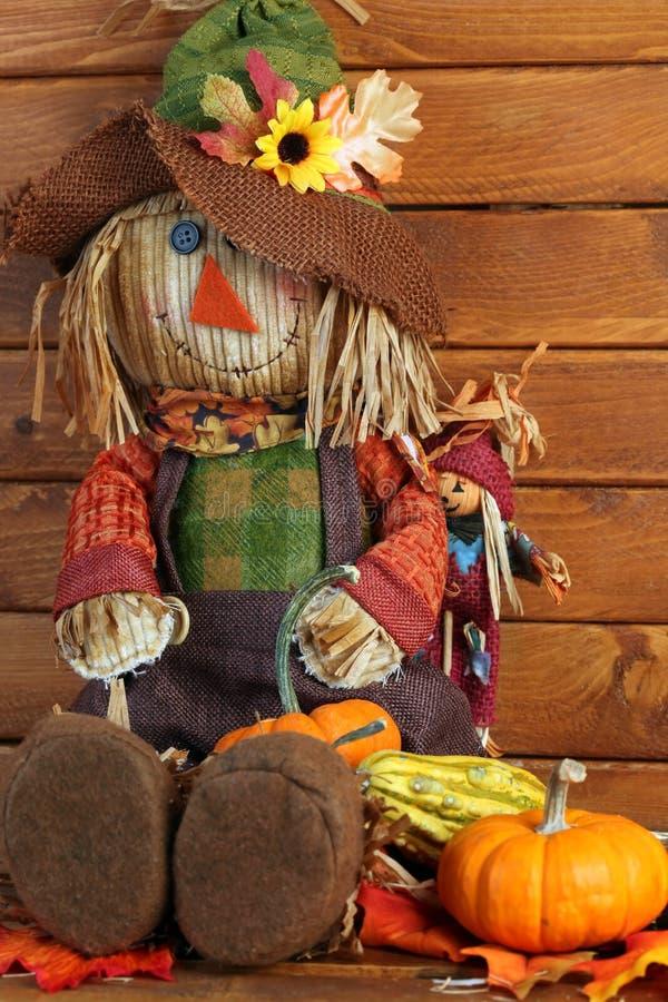 Jesieni strach na wróble zdjęcie stock