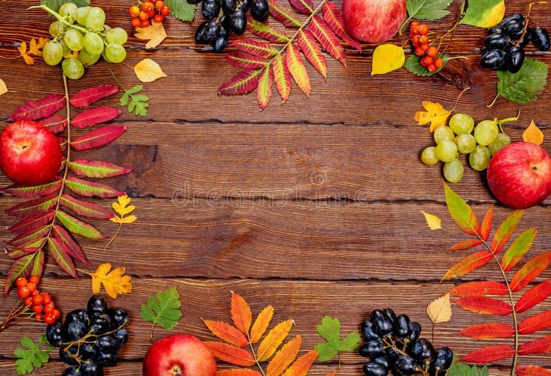 Jesieni tło z kolorem żółtym, z jaskrawymi liśćmi, sosnowymi rożkami, kasztanami i jagodami, Ramowy jesieni żniwo na kraszonym dr obraz royalty free