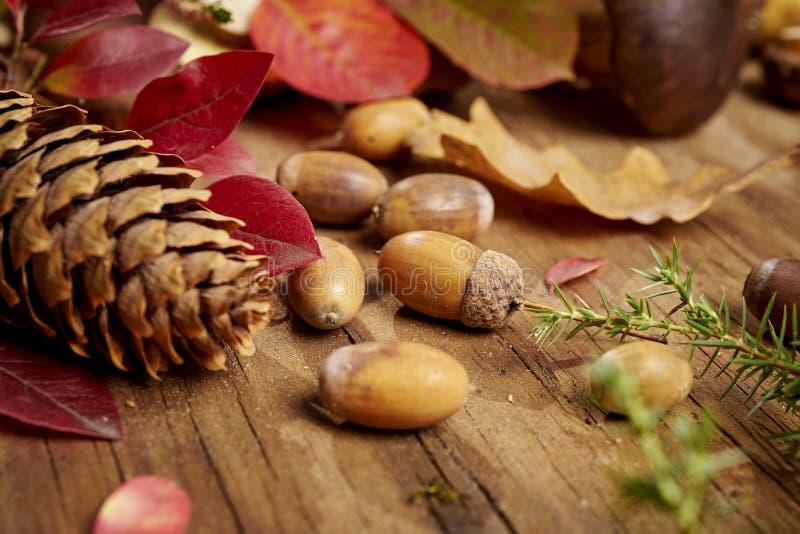 Jesieni tło z liśćmi, acorns i rożkami na starym drewnianym stole, obraz royalty free