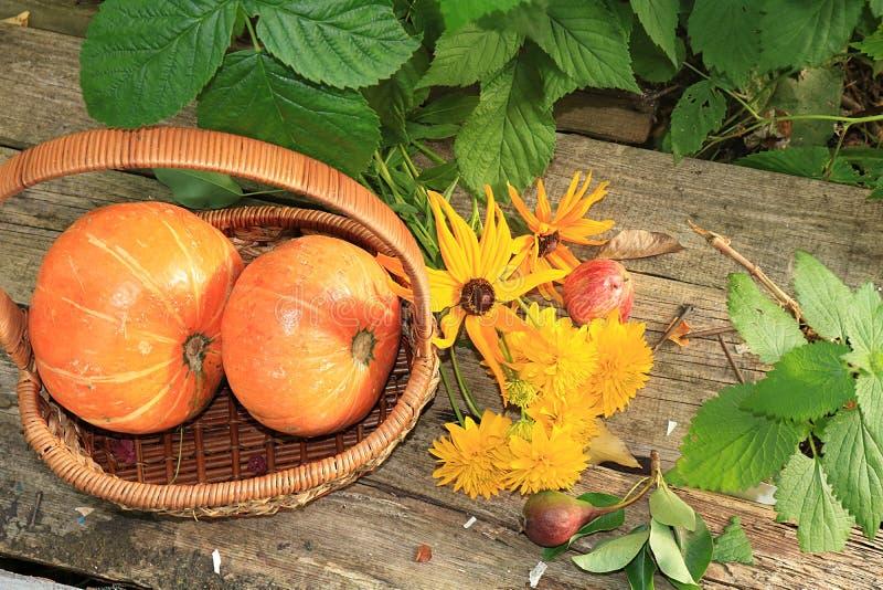 Jesieni tło z sezonowymi jagodami, baniami w koszu i jesieni natury kwiatami na drewnianych deskach, kopii przestrzeń, mieszkanie fotografia royalty free