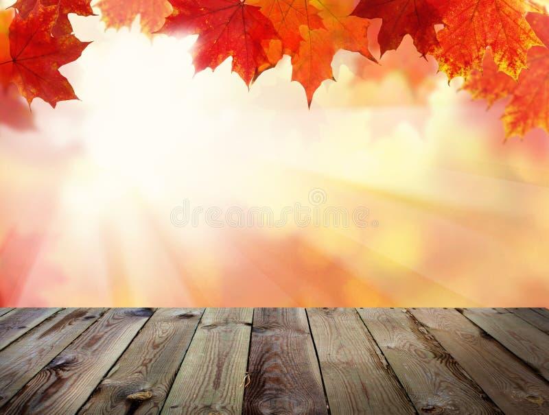 Jesieni tło z spadków liśćmi, abstrakta światła kontrpara zdjęcia royalty free