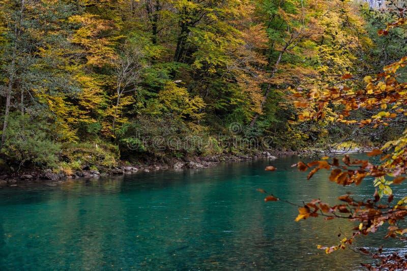 Jesieni Tara rzeczny jar w Montenegro obraz royalty free