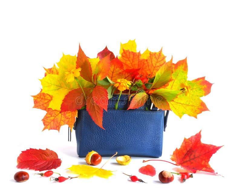 Jesieni torba i liście obrazy royalty free