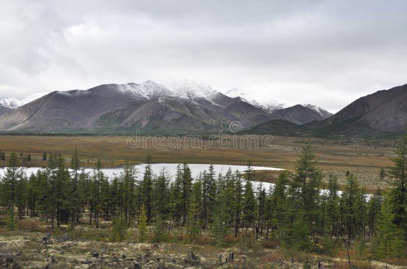 Jesieni tundra na tle góry w Yakutia. fotografia royalty free