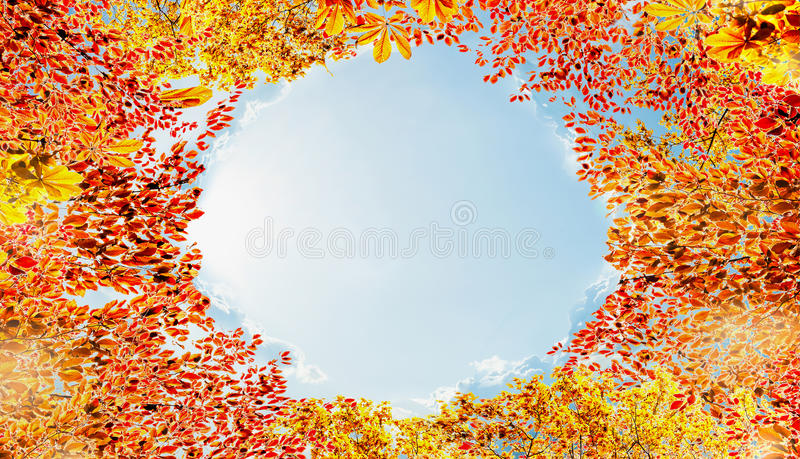 Jesieni ulistnienia rama przy nieba tłem, różnorodna kolorowa spadków liści rama zdjęcia stock