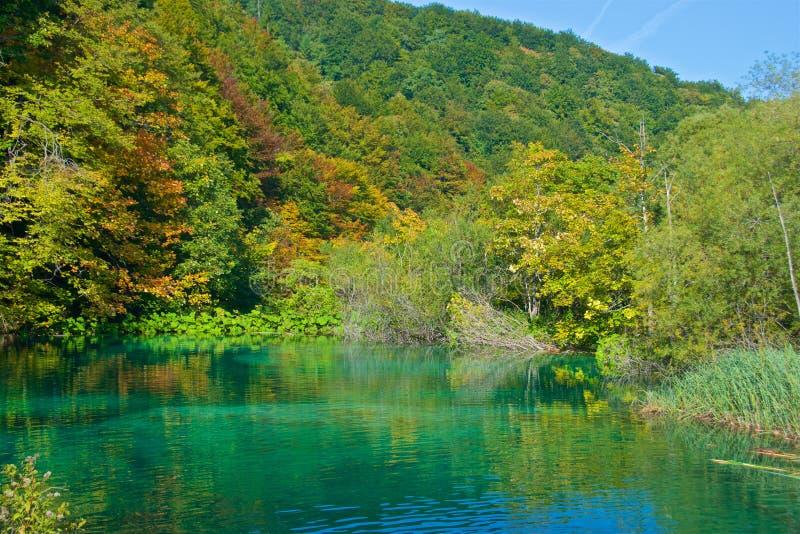 Jesieni ulistnienie przy Plitvice jezior parkiem narodowym w Chorwacja zdjęcie royalty free