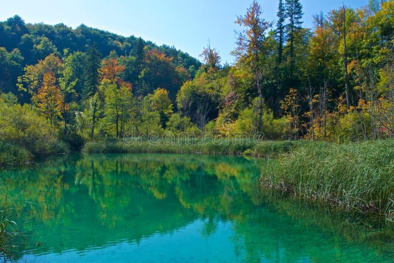 Jesieni ulistnienie przy Plitvice jezior parkiem narodowym w Chorwacja fotografia stock
