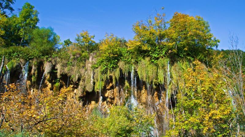 Jesieni ulistnienie przy Plitvice jezior parkiem narodowym w Chorwacja zdjęcie stock