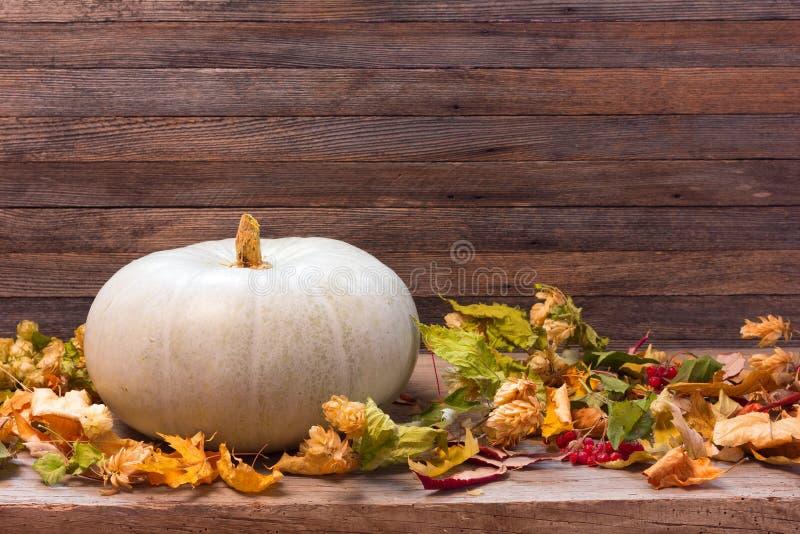 Jesieni wciąż życie z banią i suszy liście na drewnianym tle zdjęcia stock