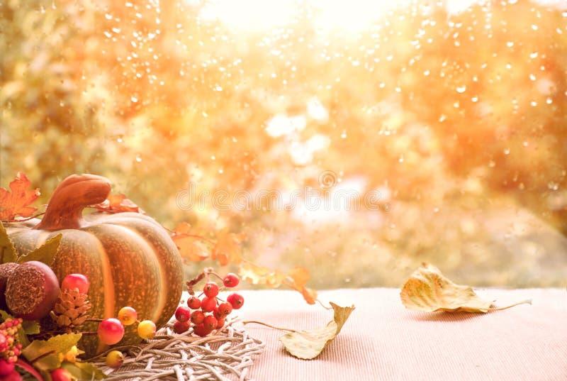 Jesieni wciąż życie z baniami i suszy liście na nadokiennej desce zdjęcie stock