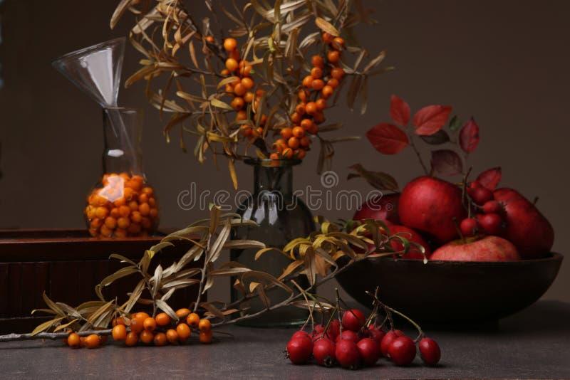 Jesieni wciąż życie z dennym buckthorn, głogowymi jagodami i jabłkami, zdjęcia stock