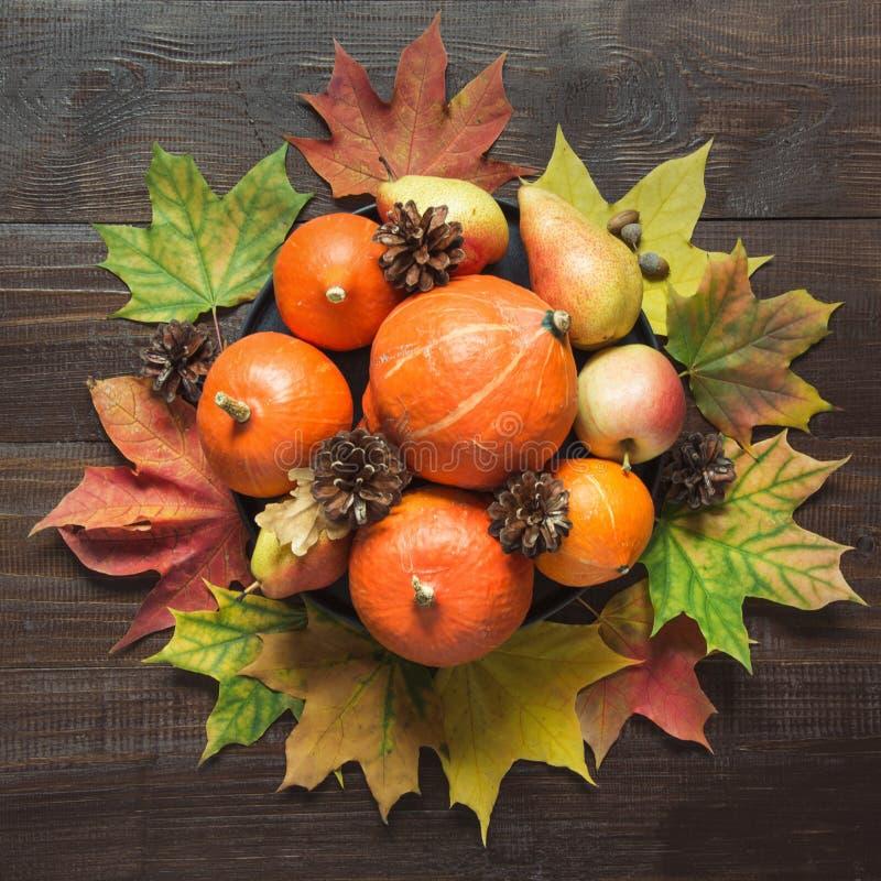 Jesieni wciąż życie z kolorowymi liśćmi, dojrzałe pomarańczowe banie, jabłka na drewnianej desce kosmos kopii Odgórny widok zdjęcia stock