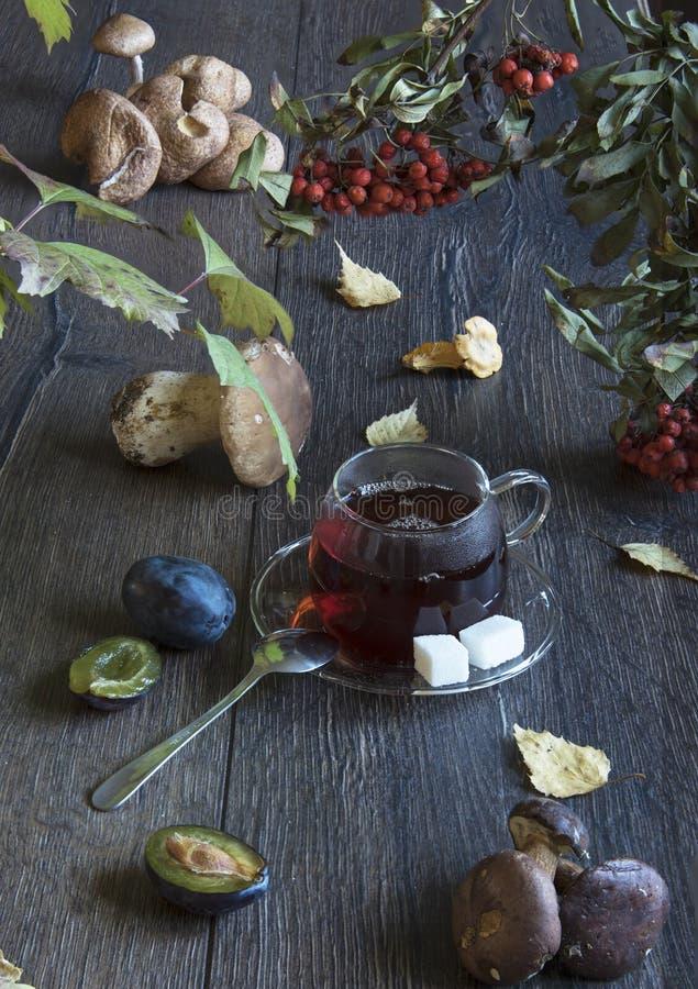 Jesieni wciąż życie z pieczarkami i filiżanką herbata na drewnianym stole obraz stock