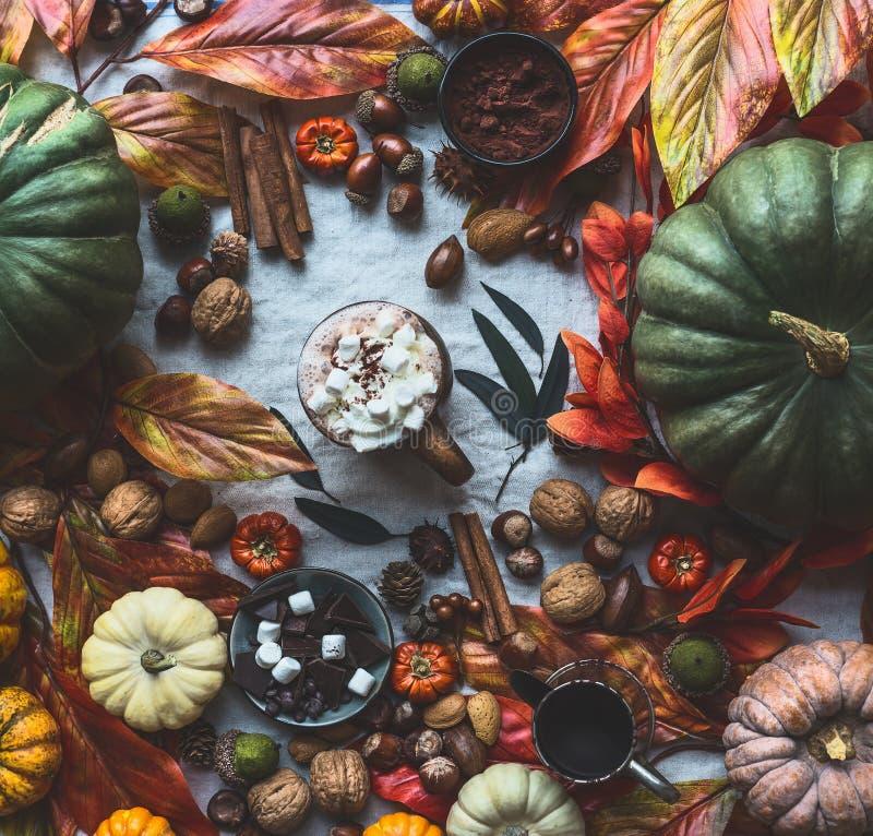 Jesieni wciąż życie z różnorodnymi kolorowymi baniami, spadek opuszcza, dokrętki, kubek gorąca czekolada, marshmallow, cynamonowy zdjęcie stock