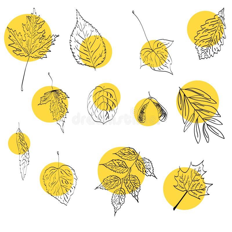 Jesieni wektorowy ustawiający z liści handdrawn doodles royalty ilustracja