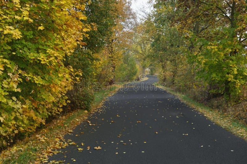 Jesieni wiejska droga obraz stock