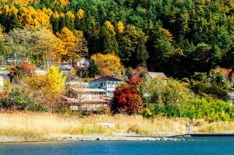Jesieni wioska i las zdjęcie royalty free
