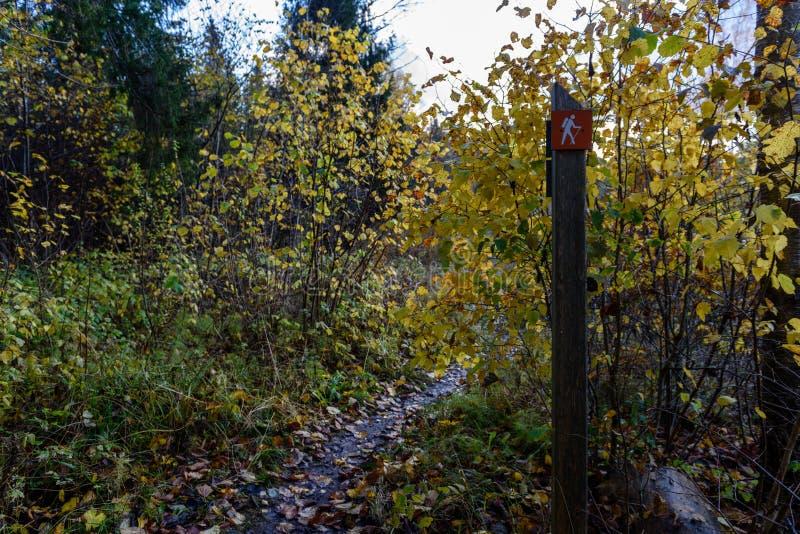 jesienie barwiący drzewa w parku z szyldowego ocechowania turystycznym śladem obraz royalty free