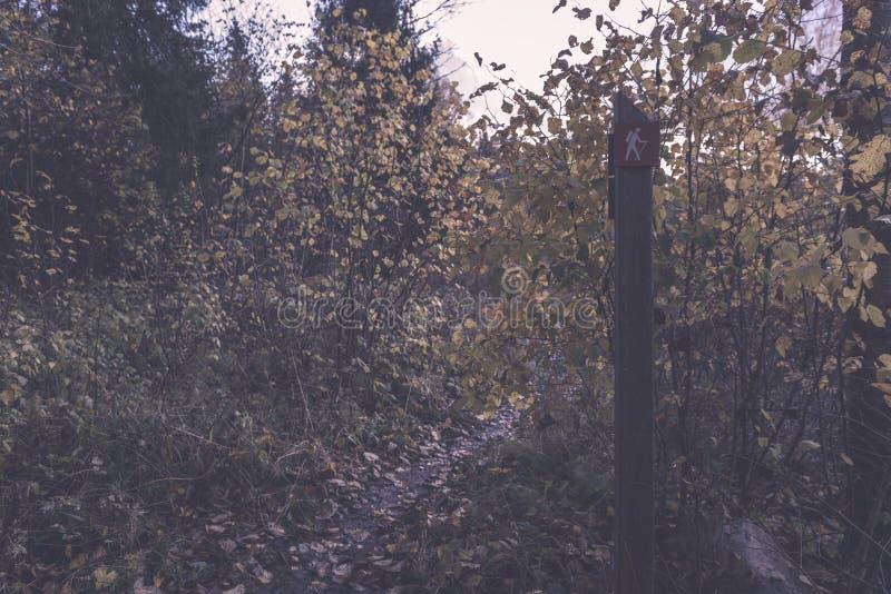 jesienie barwiący drzewa w parku z szyldowego ocechowania turystycznym śladem fotografia royalty free