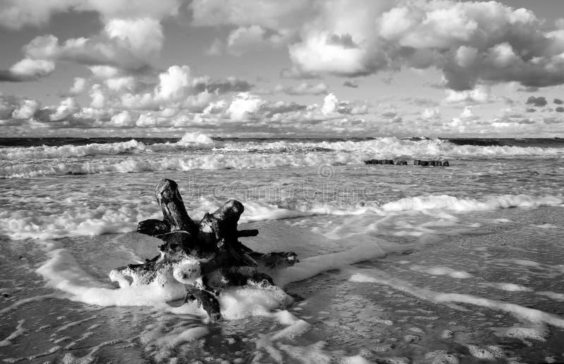 Jesienna burza nad morzem bałtyckim, Kolobrzeg, Polska obraz stock