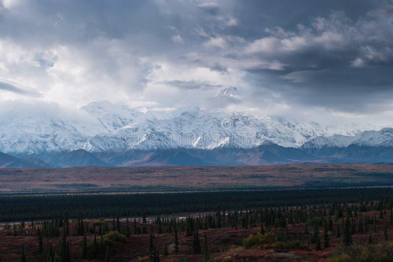 Jesienna Denali parka narodowego sceneria w chmurnym dniu obraz stock