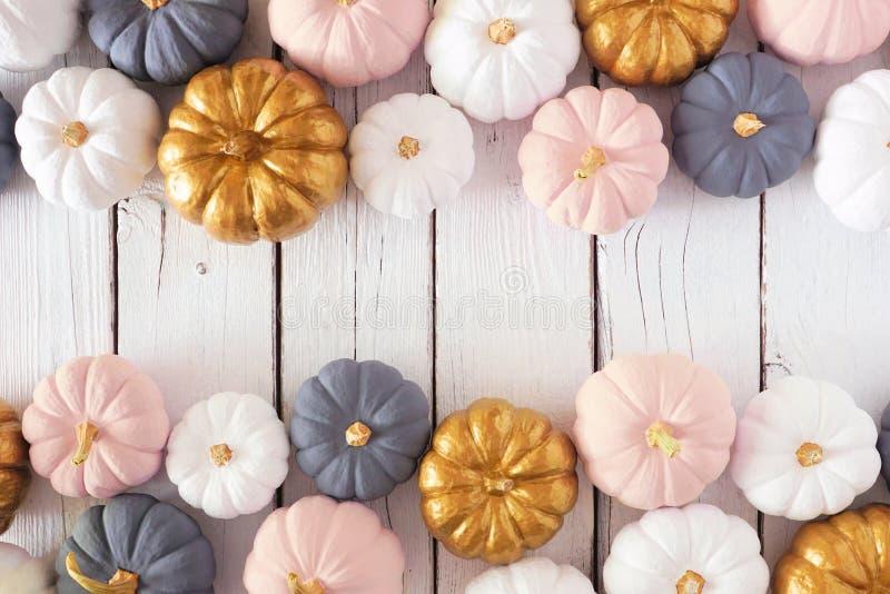 Jesienna podwójna granica zakurzonej róży, białych, złotych i szarych dyni na białym lesie obrazy royalty free